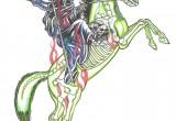 Horseman (Death)